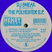 DJ Sneak presents The Polyester - Single by DJ Sneak