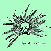 Dos Caminos - Single by Binaural