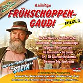 A zünftige Frühschoppen-Gaudi - Folge 3 by Various Artists
