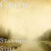 Standing Still (feat. Mrs. Remarkable) by Crow (60's)