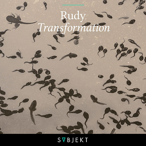 Transformation by Rudy