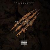 Cabin Fever 3 by Wiz Khalifa