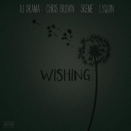 Wishing (feat. Chris Brown, Skeme & Lyquin) by DJ Drama