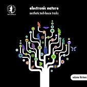 Electronic Nature, Vol. 13 - Aesthetic Tech-House Tracks! by Various Artists