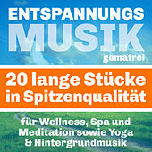 Entspannungsmusik für Wellness, Spa und Meditation sowie Yoga & Hintergrundmusik - Gemafreie Musik by Various Artists
