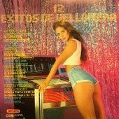 12 Exitos de Vellonera by Various Artists