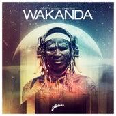 Wakanda by Dimitri Vegas & Like Mike