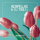 Enormous Tunes - Acapellas & DJ Tools, Vol. 1 by Various Artists