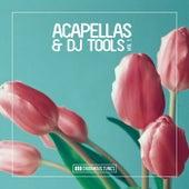Enormous Tunes - Acapellas & DJ Tools, Vol. 1 by Various Artists