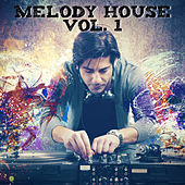 Melody House, Vol. 1 by Various Artists