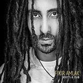 Roots & Dub by Fikir Amlak