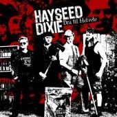 Dra Til Helvete by Hayseed Dixie