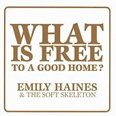 What Is Free To A Good Home? by Emily Haines & The Soft Skeleton