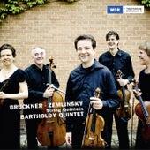 Bruckner - Zemlinksy: String Quintets by Bartholdy Quintet
