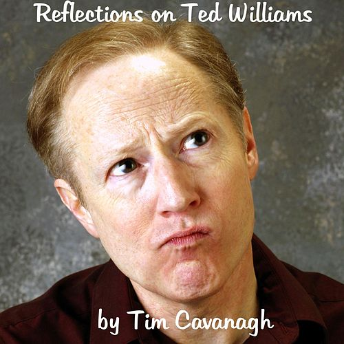 Reflections On Ted Williams by Tim Cavanagh