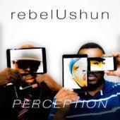 Perception by Rebelushun