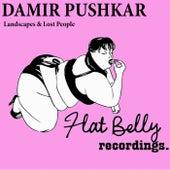 Landscapes & Lost People - Single by Damir Pushkar