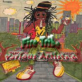 Fire Tribe Various Artists 6 by Various Artists