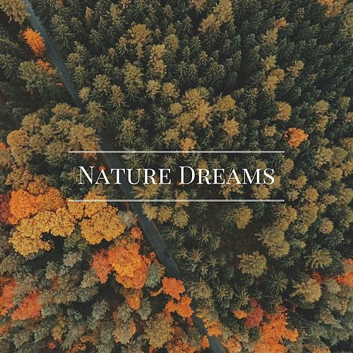 Nature Dreams by Nature Sounds Nature Music