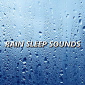 Rain Sleep Sounds by Rain Sounds Sleep