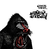 Baboon Strength by Charlie Hunter