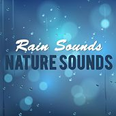 Rain Sounds & Nature Sounds by Various Artists