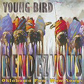 Rendevouz by Young Bird