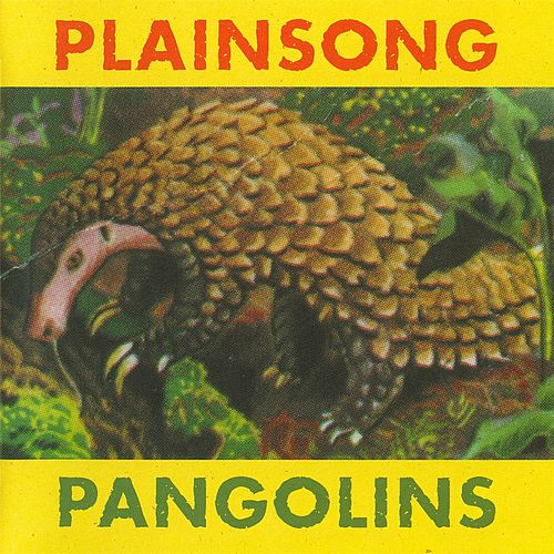 Pangolins by Plainsong