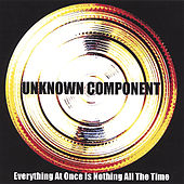 Everything At Once Is Nothing All the Time by Unknown Component