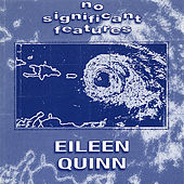 No Significant Features by Eileen Quinn