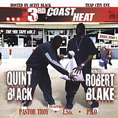 3rd Coast Heat : Vol. 2 by Various Artists