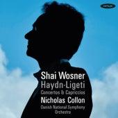 Haydn & Ligeti: Concertos & Capriccios by Shai Wosner