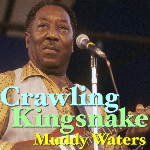 Crawling Kingsnake von Muddy Waters