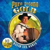 Puro Tejano Gold by David Lee Garza