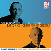 Stravinsky: The Rite of Spring - Bartók: Concerto for Orchestra, Sz. 116 by Park Avenue Chamber Symphony