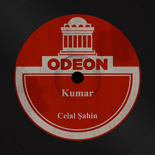 Kumar by Celâl Şahin