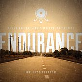 Endurance by The Jazz Jousters