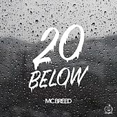 20 Below by MC Breed