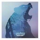 Kidlife Crisis von Grizzly (1)