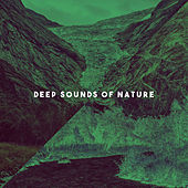 Deep Sounds Of Nature by Various Artists