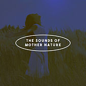 The Sounds Of Mother Nature by Various Artists