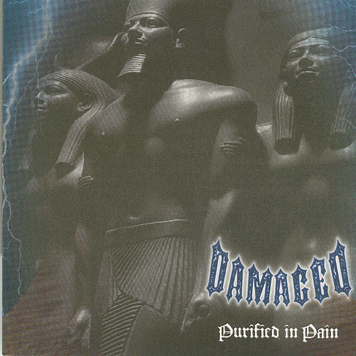 Purified In Pain by Damaged