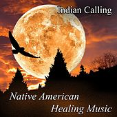 Native American Healing Music by Indian Calling