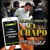 Los Mejores Corridos del Chapo en Mi Playlist by Various Artists