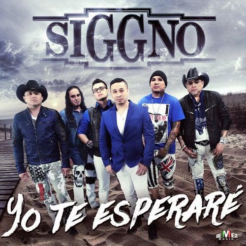 Yo Te Esperare by Siggno