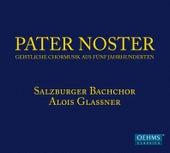 Pater noster: Geisitliche Chormusik aus Fünf Jahrhunderten by Salzburger Bachchor