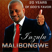 Inzulu (20 Years Of God's Favor) by Malibongwe