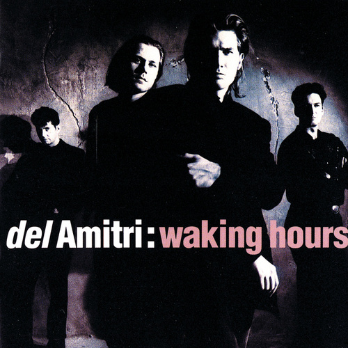 Waking Hours by Del Amitri
