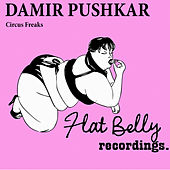 Circus Freaks - Single by Damir Pushkar