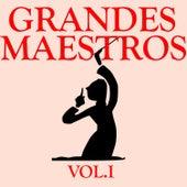 Grandes Maestros Vol.I von D.R.